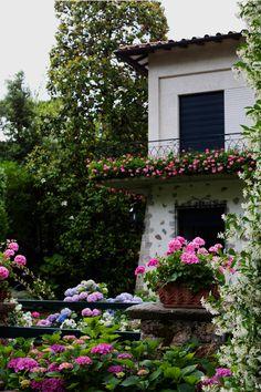 Augustus Hotel, Forte dei Marmi Italy from Sartorialist Porche, My Secret Garden, Dream Garden, Oh The Places You'll Go, Beautiful Gardens, Beautiful Flowers, Garden Inspiration, Outdoor Gardens, Garden Design