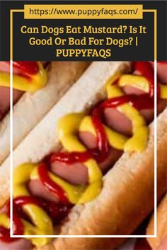 Visit here to check out can dogs eat mustard on PuppyFAQS Blog! If you are looking to find out if it's safe to give your puppy dijon or French's yellow mustard, then this is the blog post for you! For the definitive guide on Can Dogs Eat Mustard, click to be directed to the PuppyFAQS blog. If you still need help after reading our article on whether or not your pooch can eat mustard, please leave us an email at liz@puppyfaqs.com and we'll get back as soon as possible. Happy pup parenting! :) Mustard Greens, Honey Mustard, Types Of Mustard, Inflammation Of The Stomach, Boiled Vegetables, Marinate Meat, Toxic Foods, Dog Diet, Can Dogs Eat
