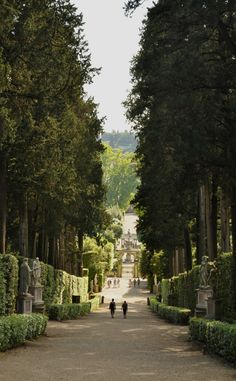 Boboli Gardens, Florence, Italy.- Wonderful place to spend a day and I  had not thought but suggest might be a good spot to take a bottle of chianti and a picnic basket.   The gardens are open free (and Palazzo Pitti) on some days through the year too.