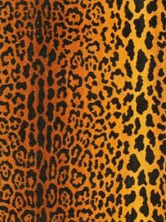 Clarence House Fabrics & Wallpapers -  Jaguar Velours Soie - Natural Price Per Yard: $1,149.25