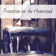 Protection On The Homestead - Here on our homestead, it is a requirement to not only be prepared for ANYTHING, it is also necessity to be protected! Learn how we protect our home. Self Defense Moves, Self Defense Weapons, Off Grid Tiny House, Off Grid Cabin, Safety And Security, Home Security Systems, Homesteaders Life, Wildlife Protection, Water Systems