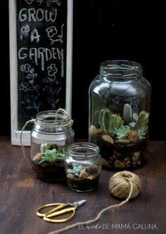 Como hacer un terrario de suculentas reciclando tarros de cristal (video)
