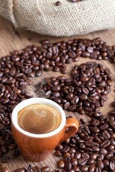 ◘ COFFEENUTS ◘