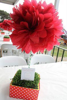Cute pom pom flower centerpiece.  http://www.nashvillewrapscommunity.com/blog/2011/09/how-to-make-tissue-paper-flowers/