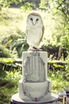 Harry Potter Patronus Cake by Little Cherry Cake Company Pretty Cakes, Cute Cakes, Beautiful Cakes, Amazing Cakes, Harry Potter Treats, Harry Potter Food, Farming, Harry Potter Wedding Cakes, Cherry Cake