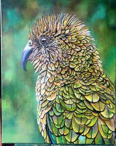 Native New Zealand Kea. Oil on canvas 51 x Nz Art, Kiwiana, Melting Crayons, Crayon Art, Bird Art, Artist At Work, Beautiful Birds, Art World, New Zealand
