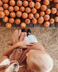 Baby and pumpkin colours! #seasons #fall #outono #autumn #fallseason #leaves #coloursofautumn @taylergolden