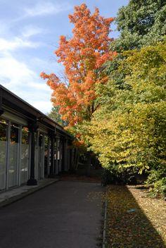 Peter Blade sera présent sur le salon TEC-Italmoda, Parc Floral de Paris (Vincennes - 94 - M° Château de Vincennes), du dimanche 25 au mardi 27 mars 2012.
