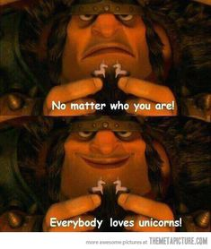 Everybody loves unicorns…