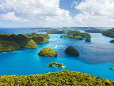 When travelers think of visiting islands in the Pacific Ocean, images sparkling blue waters and sandy, palm tree lined beaches… South Pacific, Pacific Ocean, Water Bungalow, Islands In The Pacific, Natural Scenery, Illustrations, Vacation Packages, Sandy Beaches, The Good Place