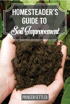 Homesteader's Guide to Soil Improvement | Gardening Tips and Ideas by Pioneer Settler at pioneersettler.co...