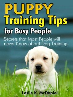 Puppy Training Tips for Busy People : Secrets that Most People will never Know about Dog Training - Special Edition by Leslie K. McDaniel. $3.50. 70 pages
