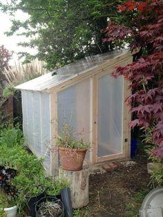 Serre de jardin : la maison idéale pour vos plantes en hiver -