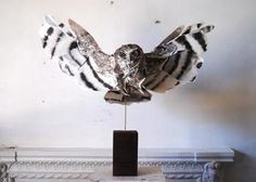 Anna-Wili Highfield is a Sydney based artist currently making sculptures of animals from paper and from copper pipe. The paper sculptures are created from archival cotton paper, that is painted, then sewn together, to create the figure of an animal. The copper pipe is bent and manipulated to create sculptural forms reminiscent of line drawings.