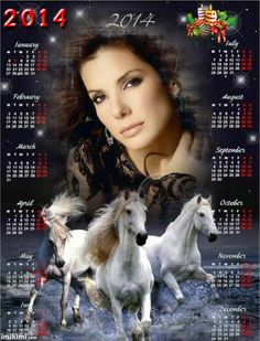 Put your own picture on a horse calendar!  #calendar #2014 #christmas #gift #idea