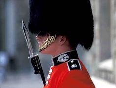 London: Guard, Buckingham Palace