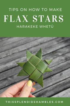 How to make harakeke whetū (flax stars) on This Splendid Shambles. Really easy, kid friendly, craft you can DIY in your own backyard. Summer Crafts, Diy And Crafts, Crafts For Kids, Maori Words, Flax Weaving, Star Diy, Maori Art, Waldorf Toys, Christmas Centerpieces