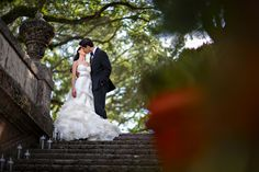top wedding photographer in miami