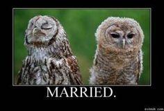 Ha! Ha! Looks like me sometimes!