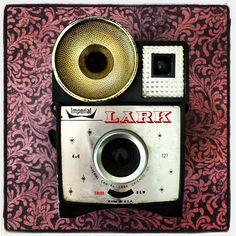 Imperial Lark #vintage #camera