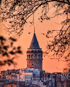 Turkey is a extremely romantic country Istanbul City, Istanbul Turkey, Fish Wall Art, Hagia Sophia, Strange Places, Nautical Art, Angel Fish, Turkey Travel, Gone Fishing