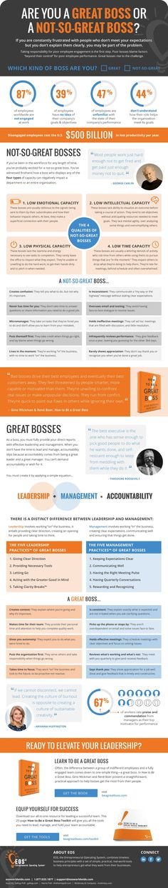 Are You A Great Boss Or A Not-So-Great Boss? business infographic infographics business infographics