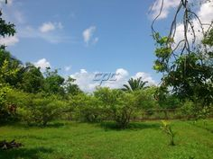 0.5 acre Residential Property in the CAYO District of Belize