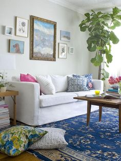 Lu likes the plant, the rug, and everything. The Pink Pagoda: Pink and Blue Love