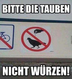 Bitte nicht die Taube würzen