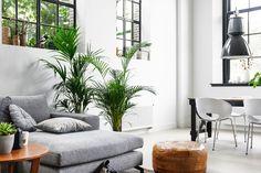 58 beste afbeeldingen van groen wonen interieurs home decor