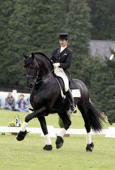 Country Sporthorse: Top Picks; The Friesian Horse - History