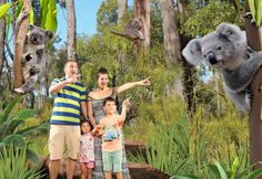 WILD LIFE Sydney Zoo - SmileFlingr