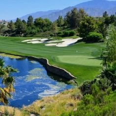 A beautiful golf course you need to play and experience. Famous Golf Courses, Public Golf Courses, Golf Painting, St Andrews Golf, Augusta Golf, Coeur D Alene Resort, Golf Course Reviews, Coeur D'alene, Golf Humor