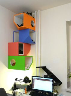 Pet-Friendly Decorating -- Colorful Cat Boxes