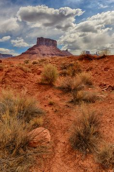 Many people travel to Moab to visit Arches and Canyonlands National Parks....and so many miss the spectacular scenery along the River Road just outside Moab.