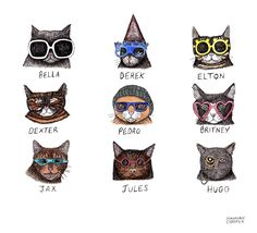 cartoon cats with glasses
