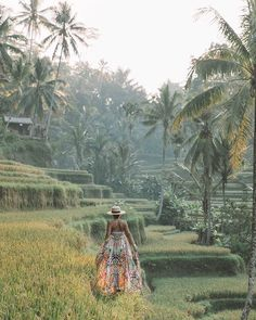 Stamp #757 - Indonesia : Escape to the Tegallalang Rice Terraces  If heading to the #Tegallalang #RiceTerrace my recommendation would be to get there at sunrise when the crowds haven't arrived and the heat isn't horrendous. #indonesia  #bali  Thank you @oneworldjustgo for your #ShareYourStamp!!  For more awesome #travel and #wanderlust tips and #adventure download the Stamp Travel #App Today. The link is in our bio! --------------------------------------------------       #traveling…