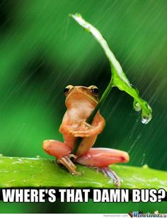 20 Best Rainy Day Humour Images Funny Stuff Rain So Funny
