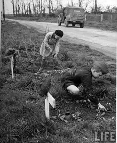 French children tending graves of fallen British soldiers. By Ralph Morse 1945
