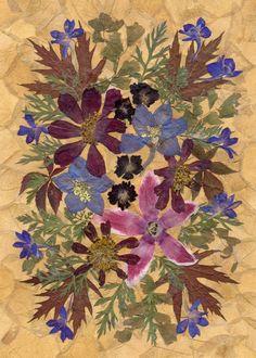 Dried Garden Cosmos, Maple Leaves, Pressed Flowers Art, Dried Flowers Decor, Framed Pressed Flowers.  #driedflowers #flowerarrangement