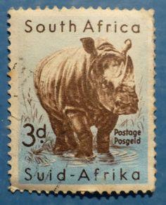 3d South Africa - Rhino