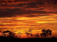My beautiful country Colombia a sunset at the East Plains