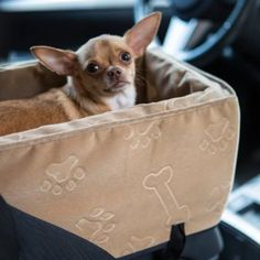 Snoozer Luxury Console Pet Car Booster Seat - Small - Dog Accessories at Hayneedle