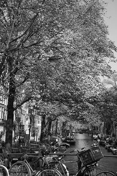 #Amsterdam canal