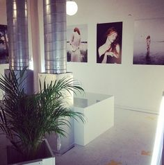 Delano Design Boutique Concept, Vieux-Montreal, QC - Old Montreal Information Center, Tourist Information, Old Montreal, Tourism, Photo Wall, Boards, Concept, Boutique, Design