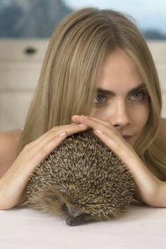 Cara Delevigne & hedgehog