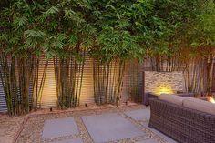 Ideas For Modern Landscape Design Backyard Drought Tolerant Bamboo Landscape, Modern Landscape Design, Landscape Plans, Garden Landscape Design, Modern Design, Contemporary Landscape, Tropical Landscaping, Modern Landscaping, Tropical Garden