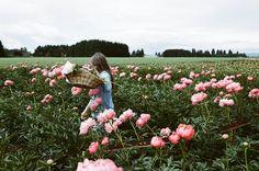 pick flowers in a field | photo by James Fitzgerald III