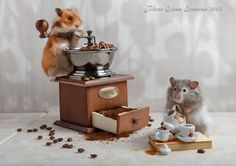 Photo coffee lovers by Elena Eremina on 500px