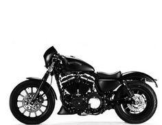 Στο Milwaukee των ΗΠΑ βρίσκεται το αρχηγείο της Harley Davidson σχεδιάστηκε μια παραλλαγή της 883 Sportster που θα απευθύνεται ειδικά για την Ιταλία. Tο αποτέλεσμα ήταν η δημιουργία της Sportster Iron 883 Special Edition S,